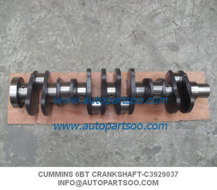 China Cummins 6BT Crankshaft Cigüeñal de Motor Cummins 6BT Crankshafts Supply distributor